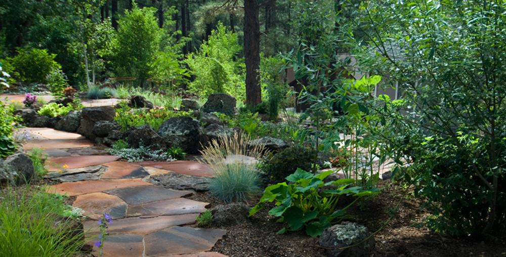 Landscaper Colorado